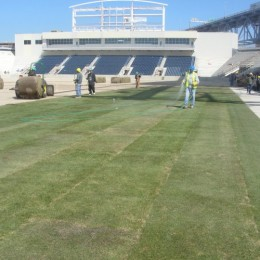 Grass planted at PPL Park, other news