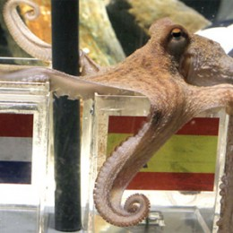 Paul the Octopus, dead at 2 1/2