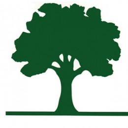 Save a tree: Portland previews, more news