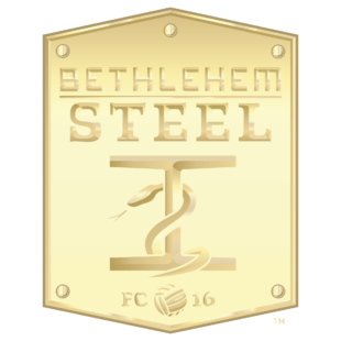 """Photo courtesy of Bethlehem Steel FC.  """"Go gold"""" on social media by using this picture as your profile icon to support Pediatric Cancer Foundation of Lehigh Valley's efforts."""